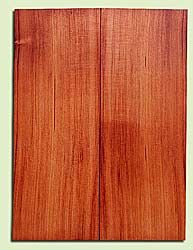 "RWMSB13967 - Redwood, Mandolin Arch Top Soundboard, Med. to Fine Grain, Excellent Color, Highly Resonant Mandolin Wood, Generates Amazing Sound, 2 panels each 0.875"" x 5.95"" X 16"", S1S"
